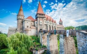 Картинка castle, tourists, edification
