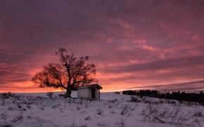 Обои снег, зима, дерево, Болгария, Плана, горы Плана, Санкт Киприан часовня, восход солнца, облака