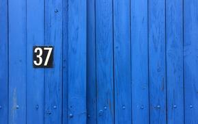 Картинка фон, забор, текстура