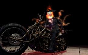Картинка Ghost Rider, Призрачный гонщик, байк