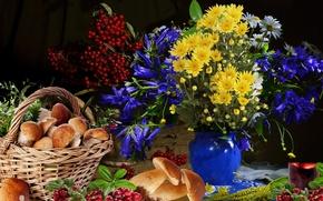 Картинка ягоды, натюрморт, Грибы, цветы, букет
