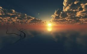 Обои море, облака, закат, гладь, дерево, ветка, горизонт, арт