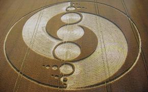 Обои поле, нло, ufo, круги на полях, want to believe, crop circles