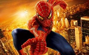 Обои человек-паук, spider-man, супергерой, город