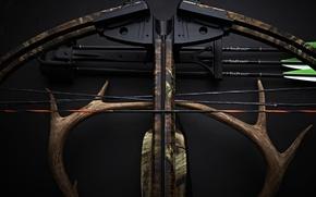 Картинка оружие, фон, рога, стрелы, Арбалет