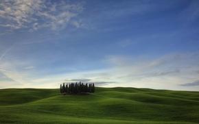 Обои холмы, деревья, поле, облака