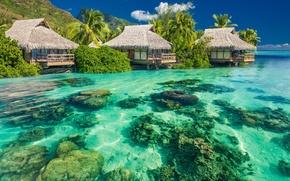 Картинка пальмы, вода, бунгало, Океан, небо, камни