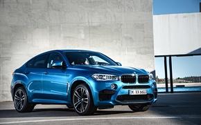 Картинка BMW, 2015, (F16)