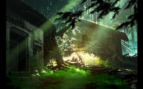 Картинка лес, трава, лучи, свет, лиса, хижины, разрушение, запустение, лисята
