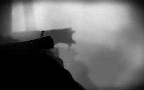 Картинка белое, черное, limbo