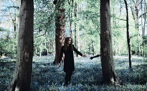Картинка лес, девушка, дерево, рука, Amy Spanos, The Darkness