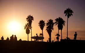 Картинка summer, california, sunset, usa, surf, los angeles, palm, vence beach