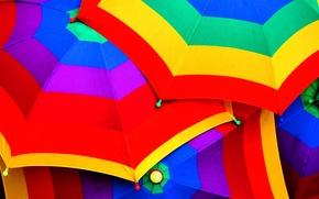 Обои фиолетовый, синий, желтый, красный, зеленый, цветные, цвет, зонт, зонты