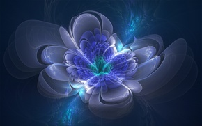 Картинка цветок, синий, зеленый, сияние, сиреневый, голубой, графика, лепестки