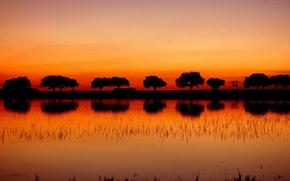 Картинка деревья, закат, озеро, отражение