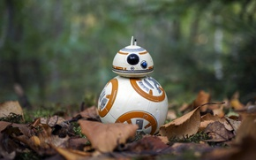Обои autumn, Star Wars, BB-8