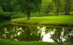 Обои парк, природа, лето, деревья, трава, река, газон