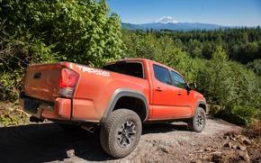 Обои 2015, TRD, Off-Road, такома, Toyota, Tacoma, тойота