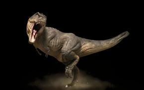 Картинка темно, пасть, стойка, Тиранозавр рекс