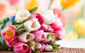 Картинка цветы, букет, весна, тюльпаны, розовые, белые