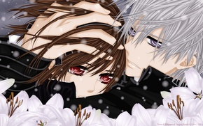 Картинка взгляд, снег, цветы, слезы, объятия, Vampire Knight, Yuki, Zero