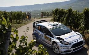 Картинка Ford, Форд, Germany, WRC, Fiesta, Elfyn Evans, Виноградники