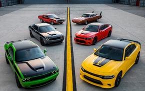Картинка Dodge, Challenger, 392
