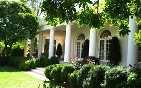 Картинка лето, дом, розы, сад, архитектура, фасад