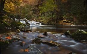 Обои river erme, devon, england, девон, англия, река