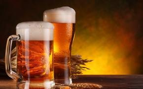 Обои кружка, стол, пиво, бокал, колосья, пена