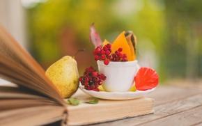 Картинка осень, листья, ягоды, чашка, красные, книга, груша, листочки, блюдце