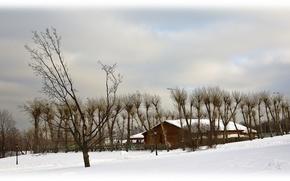 Картинка холод, зима, снег, парк