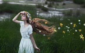 Обои поле, лето, девушка