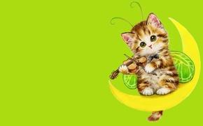 Картинка настроение, луна, скрипка, арт, котёнок, детская, костюмчик, Каёми Хараи