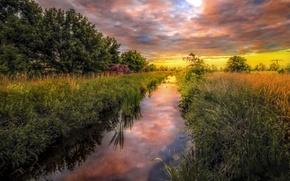 Обои германия, природа, река, трава, зелень