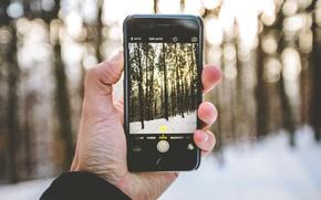 Картинка зима, лес, снег, деревья, пейзаж, фотография, iPhone, рука, боке, солнечный свет