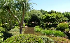 Обои сад, Japenese Garden, Toowoomba, деревья, кусты, Австралия, трава, пруд