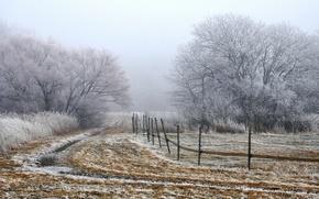 Обои утро, туман, поле, забор, пейзаж