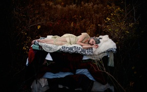 Обои Princess and the Pea, Hans Christian Andersen, девушка, по мотивам сказки, сон, лес