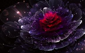 Картинка цветок, капли, дождь, silent rain