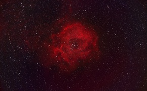 Обои Розетка, эмиссионная туманность, гигантская, в созвездии Единорог