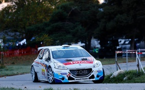 Картинка Поворот, Peugeot, Rally, 208, ERC, t16