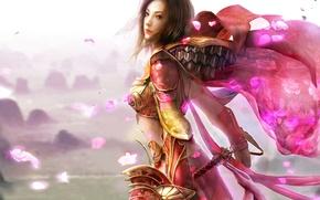 Картинка розовый, лепестки, воин