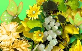 Картинка цветы, лепестки, бабочка, виноград, коллаж, лоза, листья