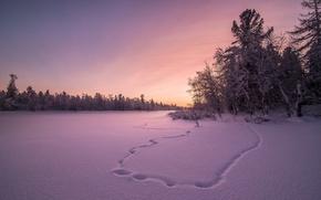 Обои закат, снег, зима, поле