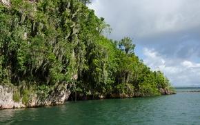 Картинка Национальный парк, Доминиканская Республика, National Park, Самана, Samana, Dominican Respublic, Los Haitises