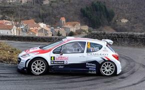 Картинка Пежо, Peugeot, Размытость, S2000, Rally, Ралли, Monte Carlo, Размытие, 207, Bryan Bouffier