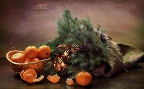 Картинка ветки, ель, колокольчики, мандарины