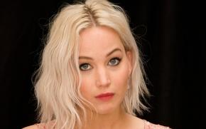 Картинка взгляд, лицо, красота, актриса, блондинка, jennifer lawrence