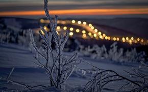 Обои зима, снег, лёд, ветка, вечер, свет.боке
